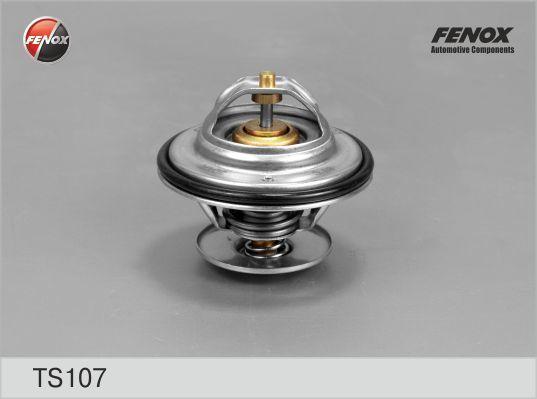 Термостат FENOX TS107