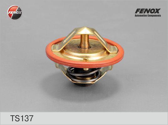 Термостат FENOX TS137