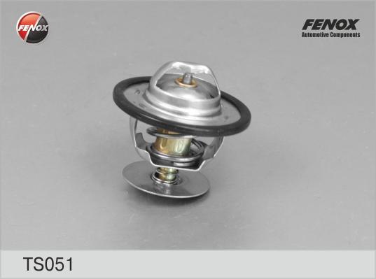 Термостат Focus I, Mondeo, Transit 1,8, 2,0, 2,5d TS051