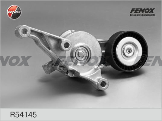 Ролик натяжителя FENOX R54145 VW Passat/Golf/Touran/T5 1.9/2.0TDi 04-
