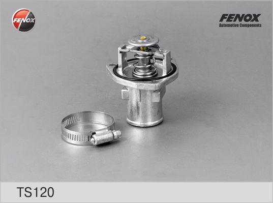 Термостат FENOX TS120