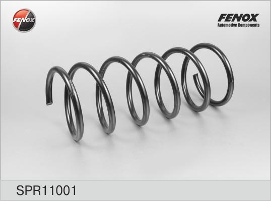 Пружина передняя Hyundai Accent 99-06 1,3, 1,5, 1,6 SPR11001