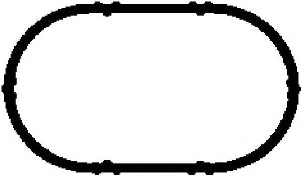 13141100 Прокладка впускного коллектора DACIA: DUSTER 1.6 16V/1.6 16V 4x4/1.6 16V Hi-Flex 10-, LOGAN 1.6 16V/1.6 16V Flexifuel 0