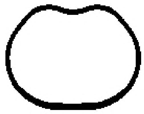13187900 Прокладка впуск.коллектора FORD FIESTA/FOCUS/FUSION 1.25-1.6 01-