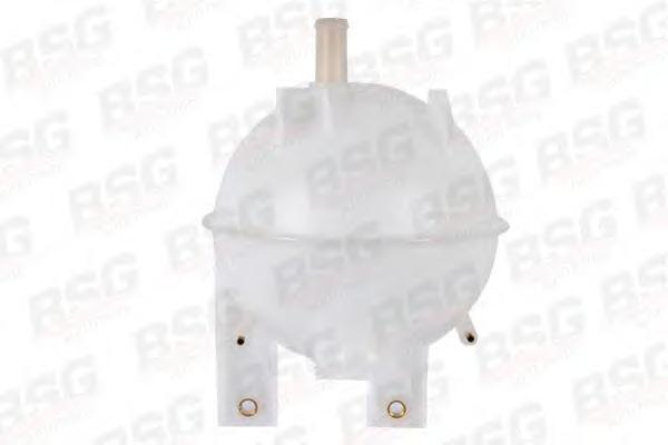 BSG30550001 Бачок расширительный / FORD Transit  94~00