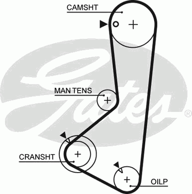 5256XS Ремень ГРМ MITSUBISHI GALANT IV 2.0 87-92 (122x24)
