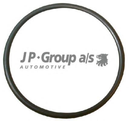 1119606400 Кольцо уплотнительное заглушки водяного флянца / AUDI,VW,SEAT (50X3.15mm)