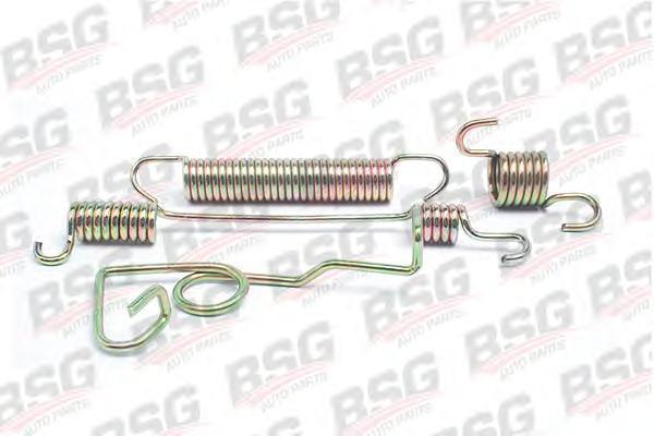 BSG30260005 Комплект (4шт) пружинок задних тормозных колодок правого колеса / FORD Transit T120 94~