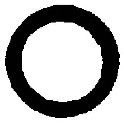 16029000 Кольцо уплотнительное термостата