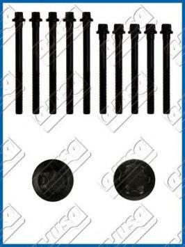 81002900 Болты ГБЦ RENAULT LOGAN/CLIO/KANGOO/MEGANE 1.4/1.6