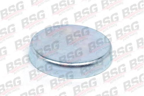 BSG30971004 Заглушка блока цилиндров 49,6x7,5 mm / FORD