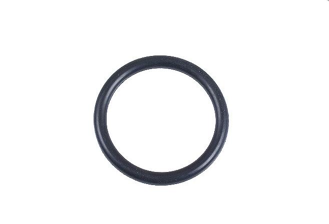 N90765301 Кольцо уплотнительное