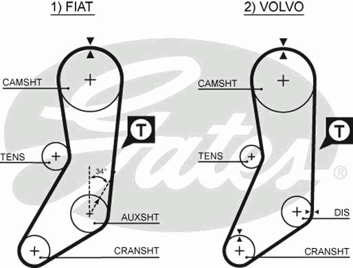 5020 Ремень ГРМ FIAT 1.6 83-90 / VOLVO 2.0-2.3 85-98 (123x19)