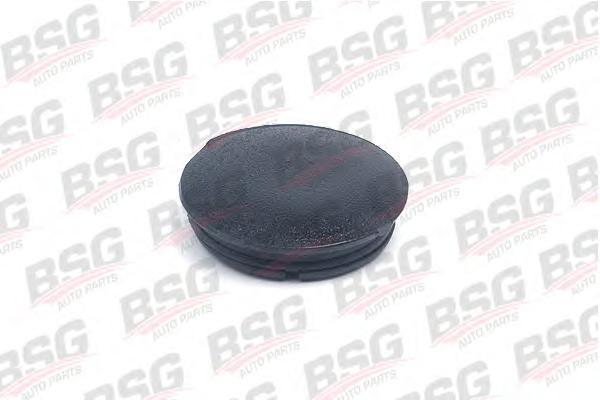 BSG30916003 Заглушка крепления зеркала  / FORD Transit 94~