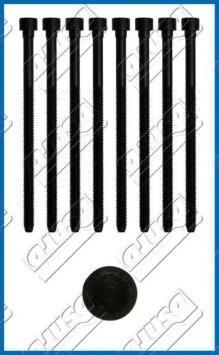 81052000 Комплект болтов ГБЦ AUDI: A4 3.2 FSI/3.2 FSI quattro 04-08, A4 3.2 FSI/3.2 FSI quattro/3.2 quattro/S4 quattro 07-, A4 A